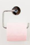 заверните туалет в бумагу Стоковая Фотография RF