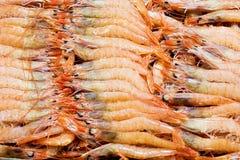 Завершите изображение креветок моря Стоковое Изображение