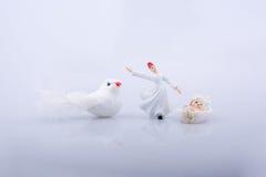 Завихряясь дервиш и белая птица на белой предпосылке Стоковые Фото
