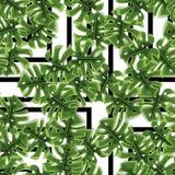 Завода джунглей лета печати ладонь экзотического тропическая выходит Картина, безшовный флористический вектор на черное белое гео Стоковое Изображение RF