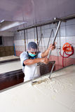 Заводской рабочий сыра Стоковая Фотография RF