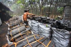 Заводской рабочий угля стоковая фотография