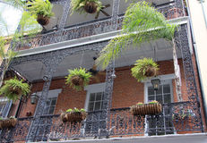 Заводы и балкон Стоковое Изображение