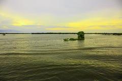 Заводы плавая в реку под мирным небом в вечере стоковое фото rf