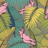 заводы попыгаев тропические вектор картины безшовный Стоковые Фото