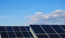 заводы приводят солнечное в действие стоковые изображения rf