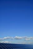 заводы приводят солнечное в действие стоковое фото