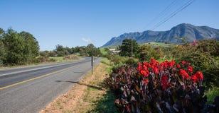 Заводы против дороги. Стоковое фото RF