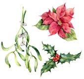 Заводы рождества акварели Вручите покрашенный poinsettia, омелу, падуб изолированный на белой предпосылке Символ праздника иллюстрация вектора