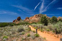 Заводь Аризона дуба, тропа утеса колокола стоковые изображения