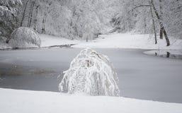 Заводь долины Гудзона в ландшафте зимы Snowy Стоковое Фото