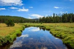 Заводь долины медведя стоковое фото rf
