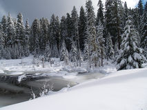 Заводь и пруд покрытые снежком стоковая фотография