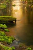 заводь осени красивейшая Стоковое Изображение