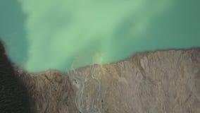 Заводь пропуская в национальный парк озеро Peyto, Banff, Альберта Канада видеоматериал