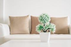Завод вазы на таблице Стоковые Изображения