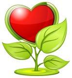 завод влюбленности