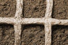 завод грязи готовый к Стоковое Изображение