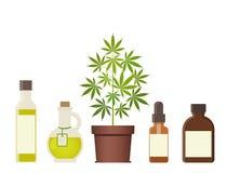Завод марихуаны и масло конопли Медицинская марихуана иллюстрация вектора