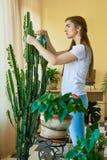 Завод молодой женщины распыляя стоковое изображение rf