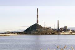 Завод на береге озера Стоковая Фотография