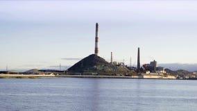 Завод на береге озера Стоковые Изображения RF