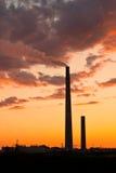 завод никеля Стоковое Фото