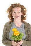 завод пахнет желтым цветом женщины Стоковая Фотография RF