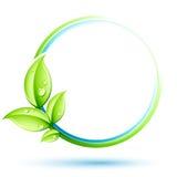 завод принципиальной схемы зеленый Стоковые Фотографии RF