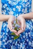 Завод с цветками в руках девушки Экологичность культивирование заводов, охрана окружающей среды Чистый воздух, консервация Стоковое Изображение