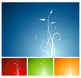 завод 4 цветов предпосылки флористический Стоковые Изображения