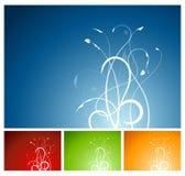 завод 4 цветов предпосылки флористический Стоковая Фотография