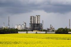 Завод Canola и Industrail Стоковые Фотографии RF