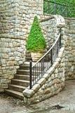 Завод Topiary Стоковое Фото