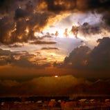 заволакивает драматический заход солнца Стоковая Фотография