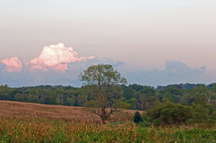 заволакивает сумрак сельской местности Стоковые Изображения