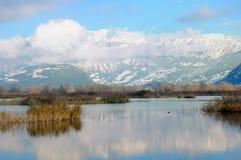 заволакивает monte guglielmo над снежком Стоковые Фото
