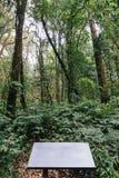 Заволоките район леса с пустой плитой информации на всем пути к лотку Kew Mae в Чиангмае, Таиланде Стоковое Изображение