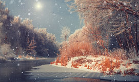 Завораживающий ландшафт зимы стоковое фото