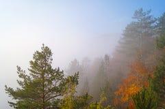 Заворот на холме Стоковые Фото