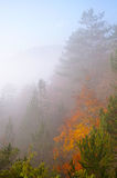 Заворот на холме Стоковые Изображения