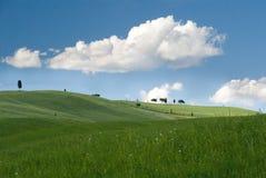 заволакивает небо природы озера Стоковые Изображения