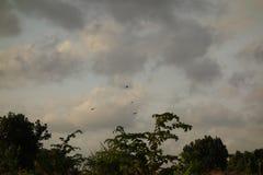 заволакивает темное небо Стоковое фото RF