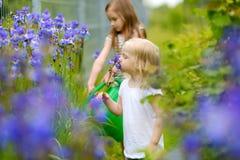 2 завода и цветки прелестных девушек моча Стоковое фото RF