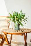 Завод вазы на таблице Стоковое Изображение