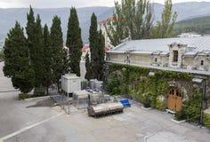 Завод вина Стоковые Изображения