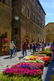 Завод и уличный рынок цветков в деревне Pienza Стоковое Изображение RF