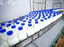 Завод молокозавода, транспортер с бутылками молока стоковые фотографии rf