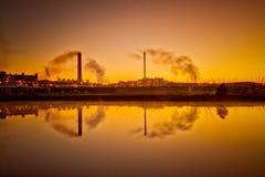 Завод никеля Стоковые Фото