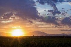 Заволокли заход солнца неба оранжевый с зеленым полем Стоковое Изображение